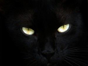 blackcateyes