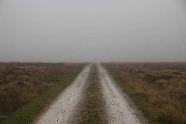 road mist moors sm
